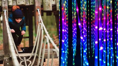 Forest & Maze (inc Illuminations after dusk)